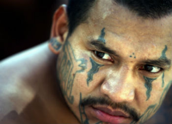 6 Common Misconceptions About the MS13 Street Gang