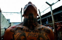 Latin America Organized Crime: What to Expect in 2015