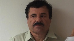 El Chapo Probably Hiding in Sinaloa, Mexico: DEA