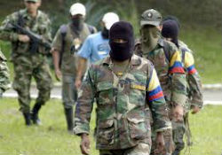Members of the FARC