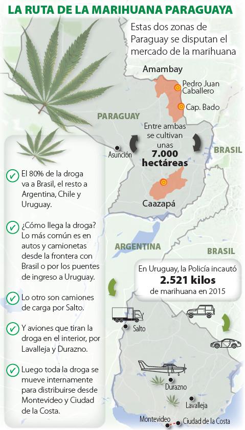 16-02-11-MarijuanaRoutes