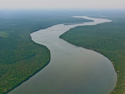 The Amazon River in Brazil