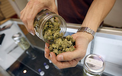 Uruguay looks to begin marijuana sales following legalization in 2013