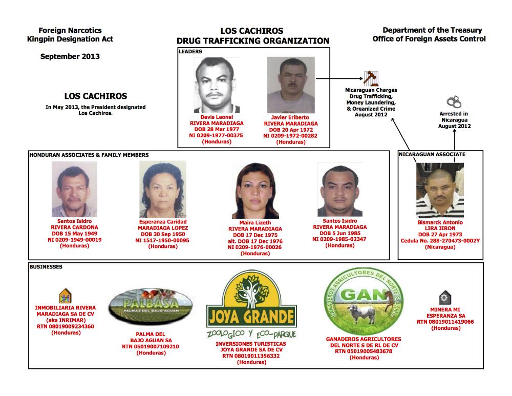 US Treasury Cachiros Organizational Chart