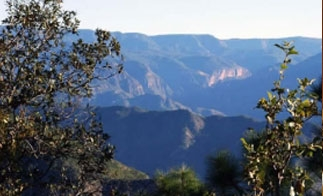 The rugged landscape of the Sierra Madre Occidental