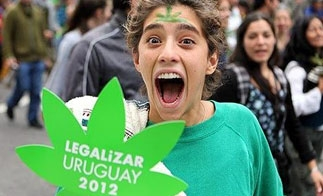 an overview of the legalization of marijuana and the many advantages of the drug Prescription drugs kill about 100,000 people in the world each yearoff the top of your head, do you know how many deaths are caused by using marijuana, either medicinally or recreationally.