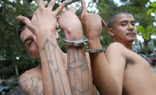 Mexican youth gang members
