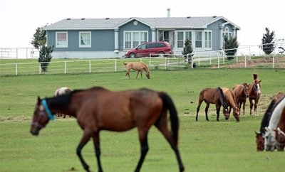 The Zetas horse ranch