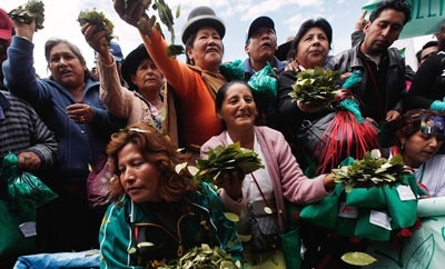 Coca growers celebrate in Bolivia