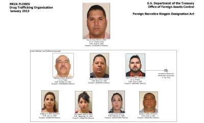 Diagram of the Meza Flores drug gang