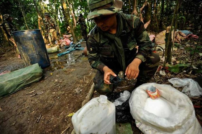 Bolivia's increasing cocaine production is fueling crime