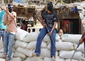 Vigilante roadblock in Guerrero, Mexico