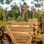 "Nicaragua's ""green battalion"" recover illegal timber."