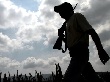 Vigilante groups have sprung up across the state of Michoacan