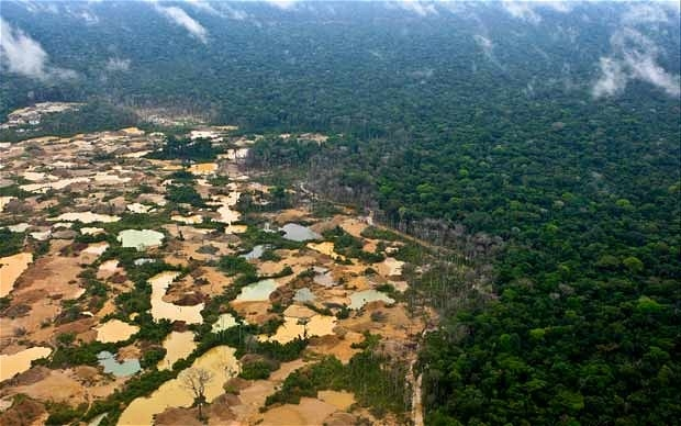 Illegal gold mining has devastated the region of Madre de Dios