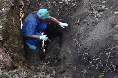 Investigators have found 19 bodies so far near Colon