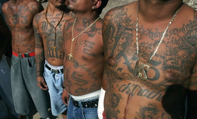 Members of the MS13