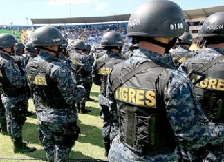 Members of the TIGRES police unit