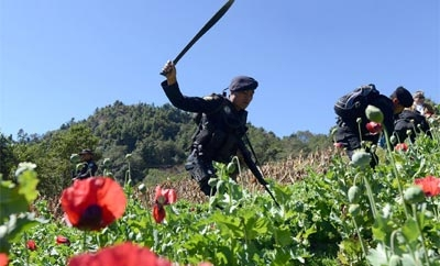 Poppy eradicators in Guatemala