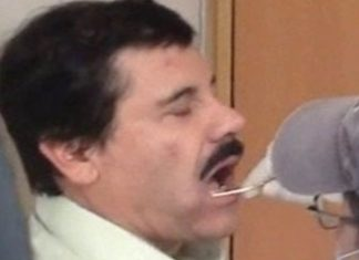 Chapo Guzman gets a DNA swab
