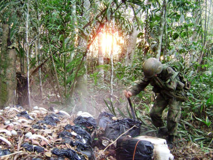 Colombian anti-narcotics police burn drug lab
