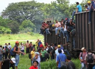 """Migrants on """"The Beast"""" in Mexico"""