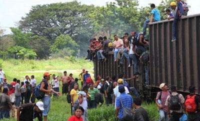 Migrants on