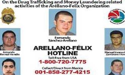 Fernando Sanchez Arellano, alias 'El Ingeniero'