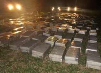 The marijuana seized in Capitan Bado - Interior Ministry