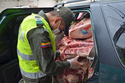 A Colombian policeman with smuggled beef