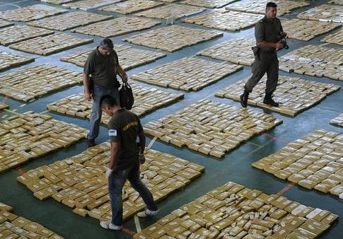 Argentine officials lay out the seized marijuana
