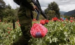 A soldier advances through a poppy field