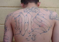 A member of the MS13 gang