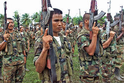 FARC guerrillas