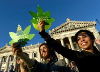 Drug policy reform advocates in Uruguay