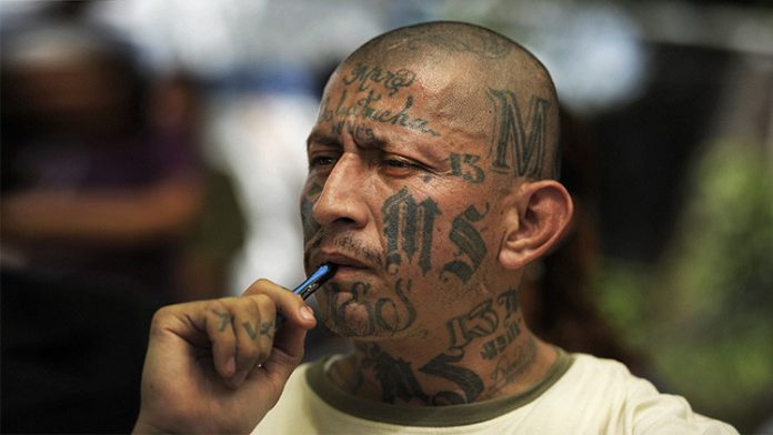 Mara Salvatrucha - Central America's most powerful street gang