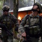 A lab burns in the Guaviare jungle region