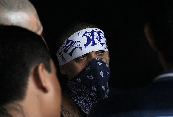 El Salvador's gangs have reportedly made a joint pact to attack the government