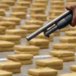 Seized drug shipment