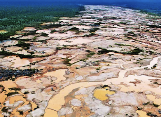 Illegal mining has destroyed virgin jungle