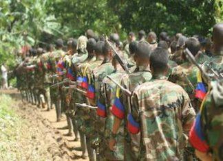 FARC guerrillas