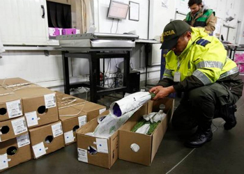 Colombian authorities are increasing inspections of flower shipments leaving the country for St Valentine's Day