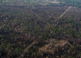 Petén clandestine airstrip near Perenco