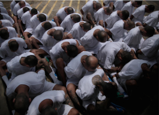 El Salvador transfers MS13 gang members