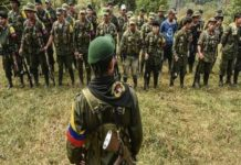 The ranks of ex-FARC Mafia are growing as more abandon the peace process