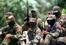 The ELN is now firmly entrenched throughout Colombian and Venezuelan territory