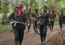 Colombia's ELN guerrillas operate across 13 of Venezuela's 24 states