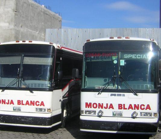 monja blanca buses