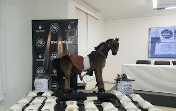 Drug traffickers in Belgium attempted to send synthetic drugs to Argentina hidden in a rocking horse