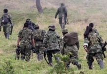 The Colombian Army has seen success against the guerrilla groups in Antioquia